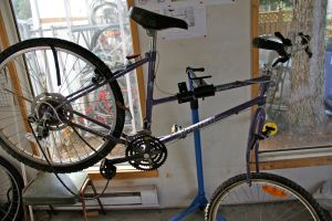 Rhonda's bike - the before shot